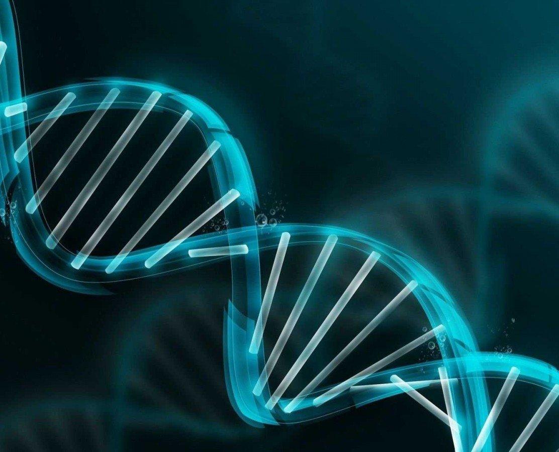 Genin promotor bölge veya herhangi bir bölgesindeki metilasyon durumunu ölçmek için