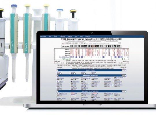 Genome-Wide DNA Hydroxymethylation Analysis