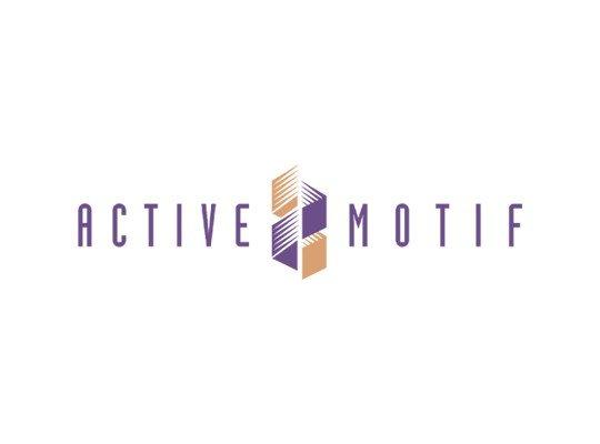 Active Motif (USA)