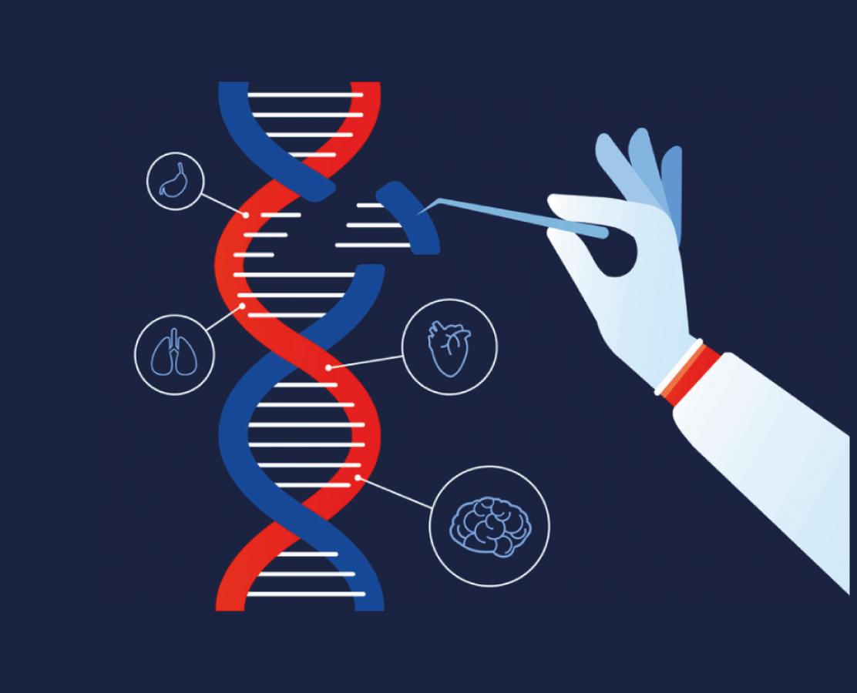 DNA Bisülfit Modifikasyon Kitleri