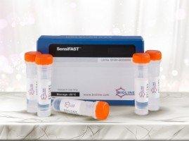 PCR Ürünleri