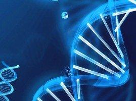 DNA Metilasyonu