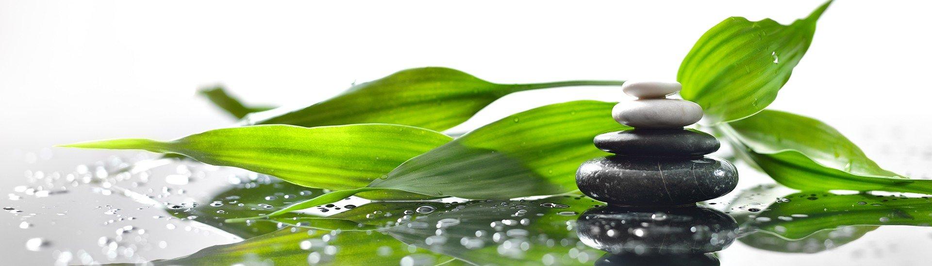 Bitkisel Yağlar ve Ekstraktlar